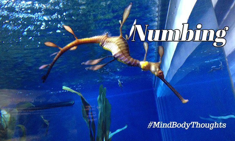 Numbing The Mind And Body