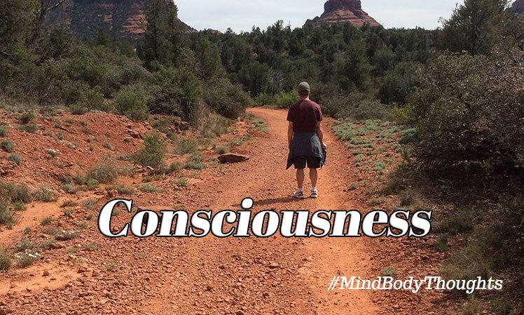 Consciousness Articles On Mind Body Thoughts