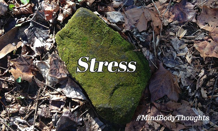 Stress Articles On Mind Body