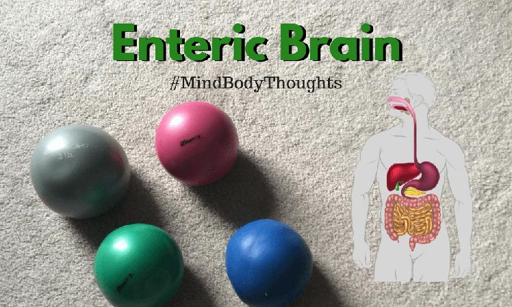 Enteric Brain And Healing Trauma