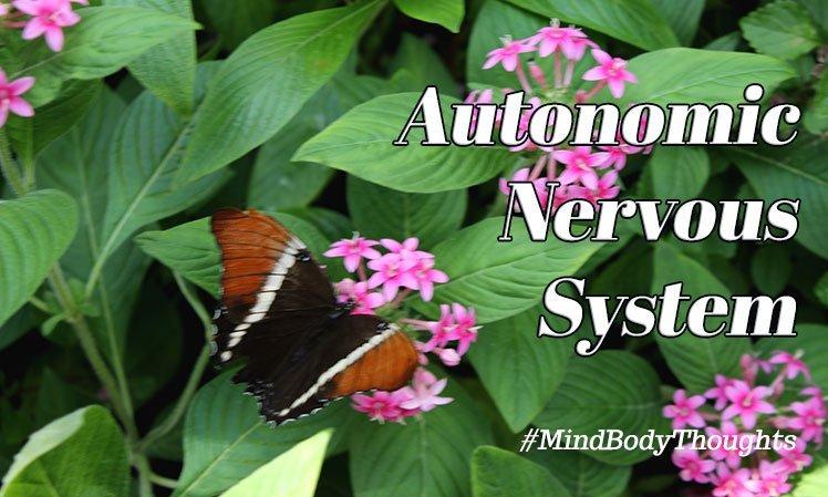 Waking Up The Autonomic Nervous System