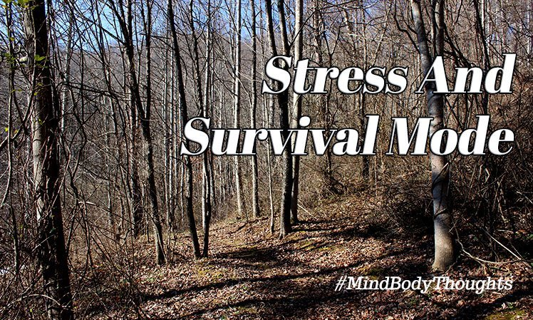 Stress And Survival Mode