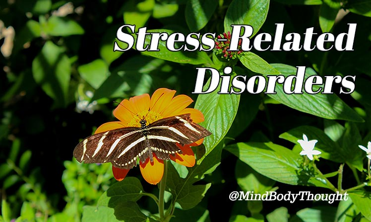 The Stress Related Disorder And The Mind Body