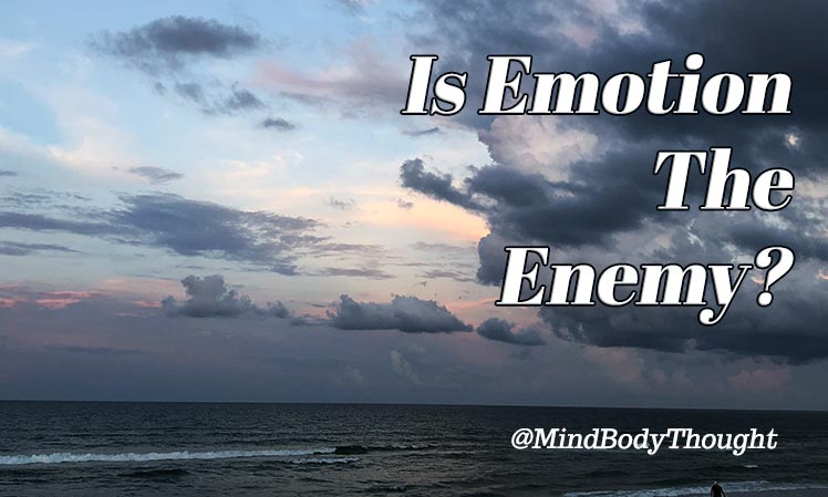 Is Emotion The Enemy?