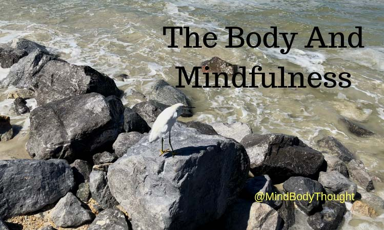 The Body And Mindfulness